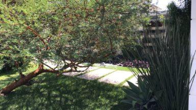 área externa casa santa mônica jardins